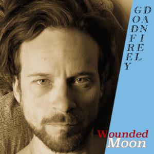 https://www.splinteredtree.com/wp-content/uploads/2020/12/Wounded-Moon-Cover-Web-1-300x300.jpg